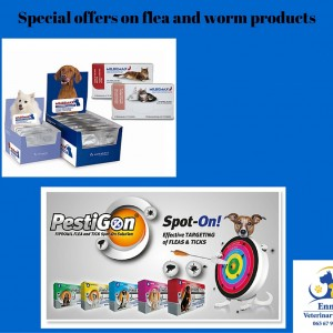 Special offers on flea and worm products